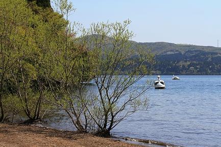 芦ノ湖にボートが似合います。