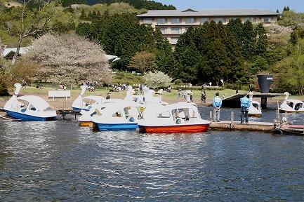 芦ノ湖で遊べるボートです。