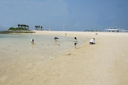 エメラルドビーチ-1