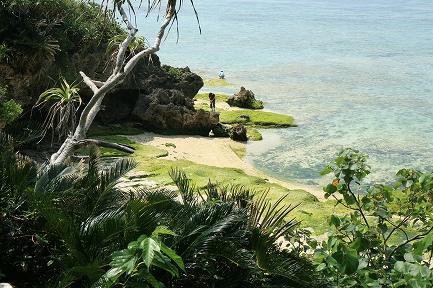 海水がきれいな海岸線