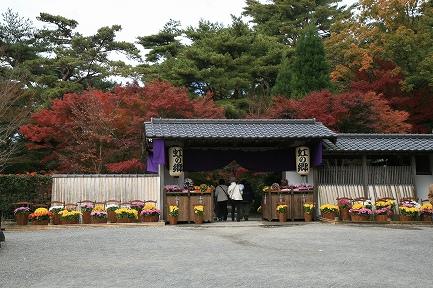 虹の郷・紅葉-2