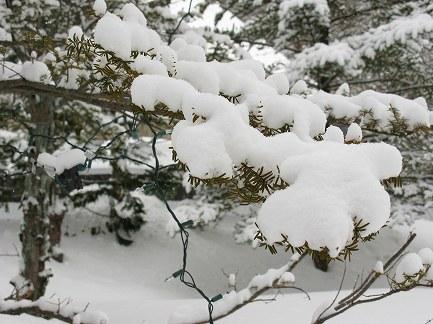 冬景色-6