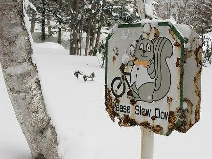 冬景色-7