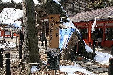 生島足島神社-6