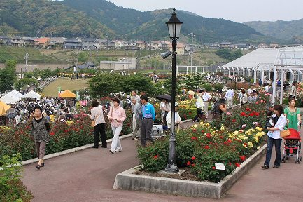 ばらの丘公園-3