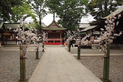 氷川神社-3
