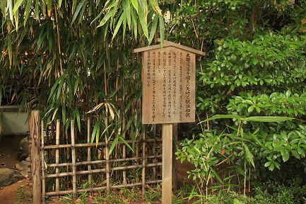 氷川神社-4