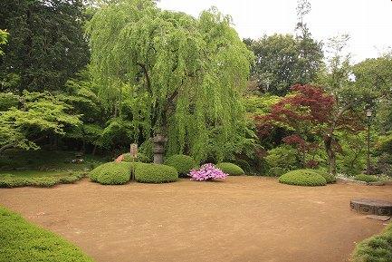 喜多院・庭園-7