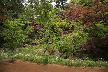 喜多院・庭園-10