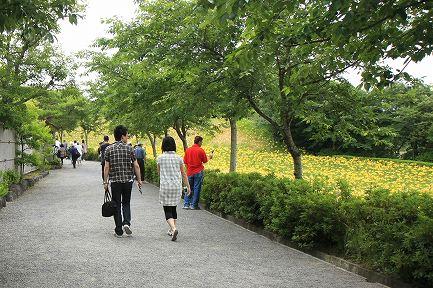 可睡ゆりの園-7