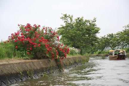 加藤十二橋めぐり-4