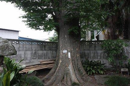 岡田記念館-8