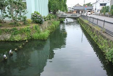 県庁堀-4