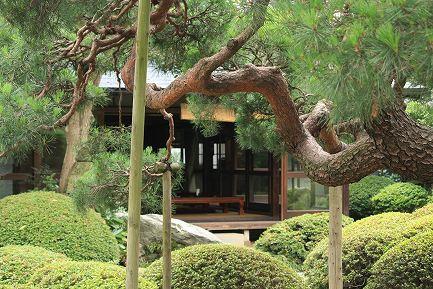 横山家・庭園-6