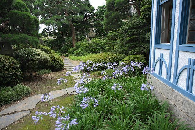 横山家・庭園-2