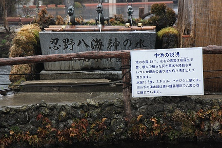 忍野八海-3