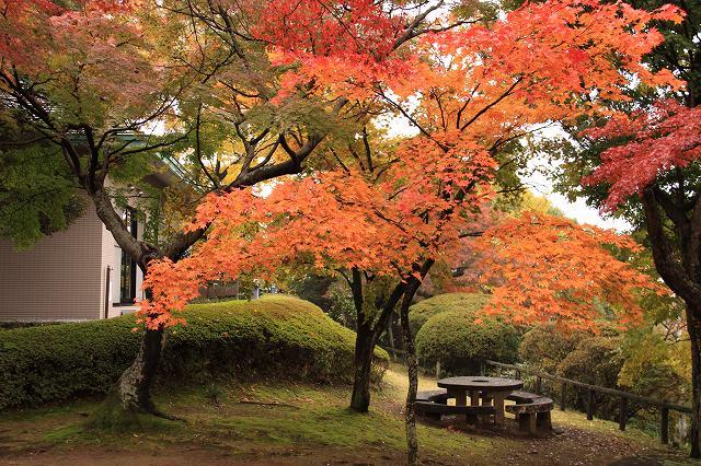 佐野・城山公園
