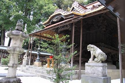 氷川神社-A
