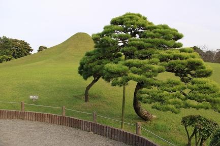 水前寺成趣園-7