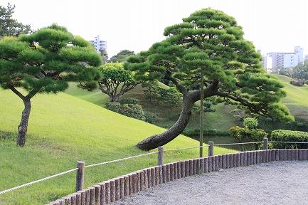 水前寺成趣園-9