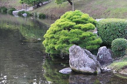 水前寺成趣園-10