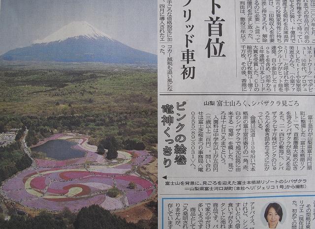 富士芝桜まつり-12