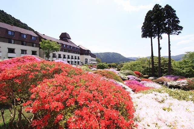 山のホテル-22