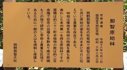 那智の滝-2