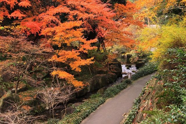 徳川園-8