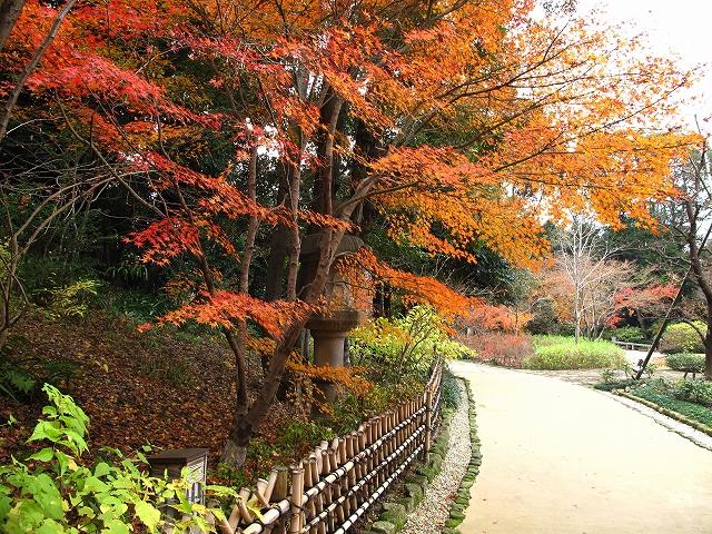 徳川園-2