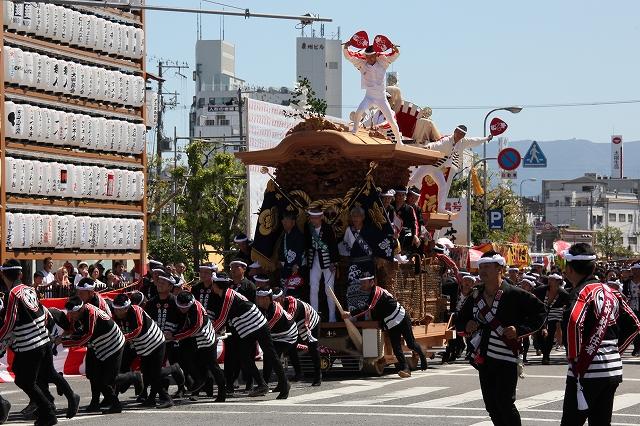だんじり祭-5