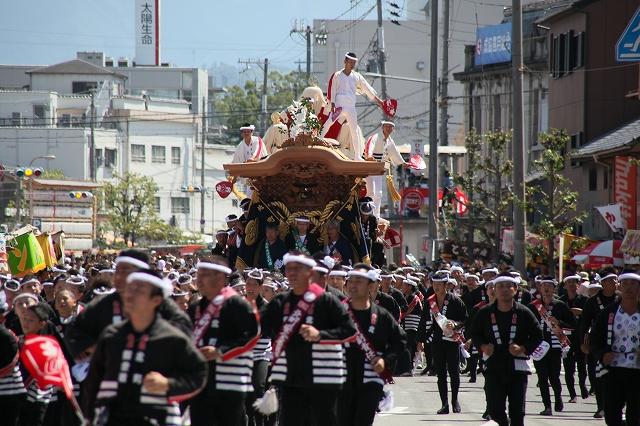 だんじり祭-4