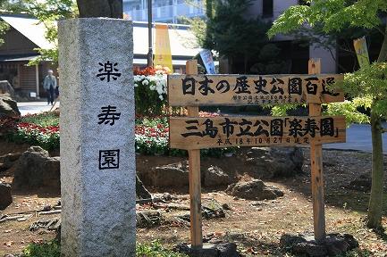 楽寿園菊まつり-1
