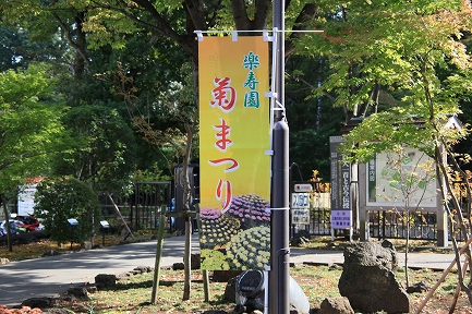楽寿園菊まつり-2