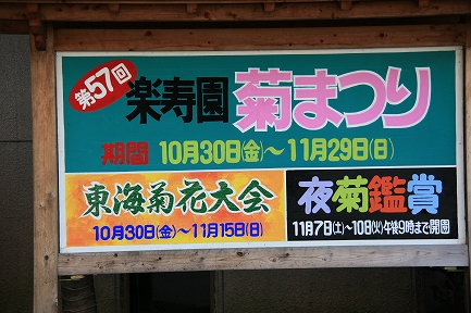 楽寿園菊まつり-3