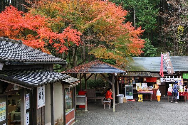 修善寺虹の郷-4