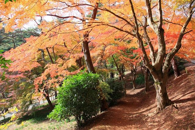 修善寺虹の郷-3