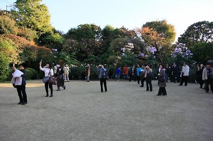 鳩山会館-10