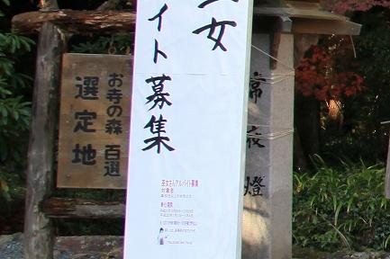小国神社-5
