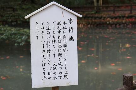 小国神社-7