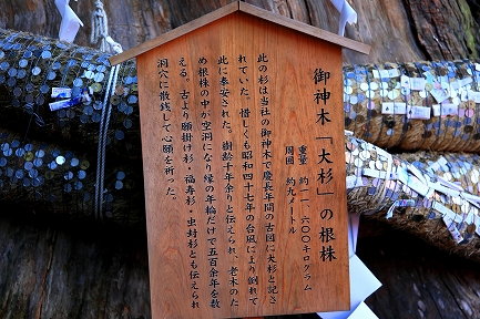 小国神社-8