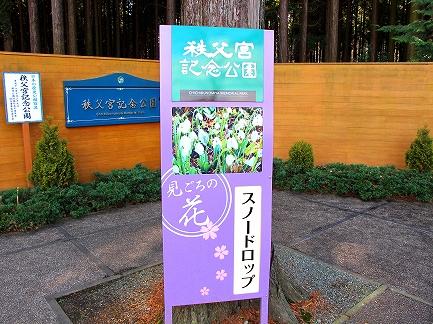 秩父宮記念公園-2