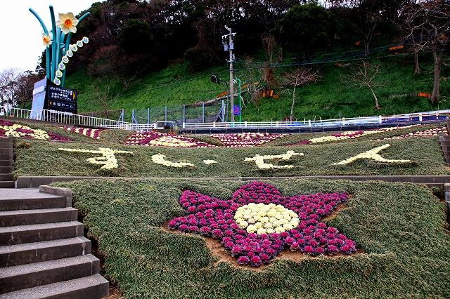 越前水仙の里公園-9