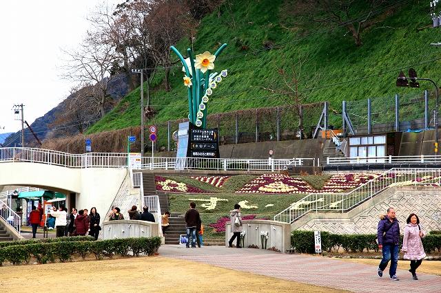 越前水仙の里公園-8