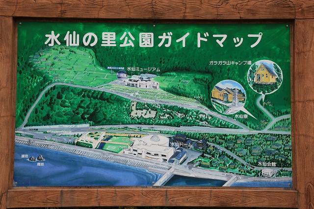越前水仙の里公園-15