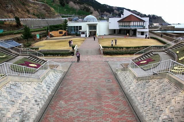 越前水仙の里公園-1