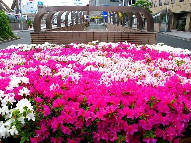 浜松駅-3