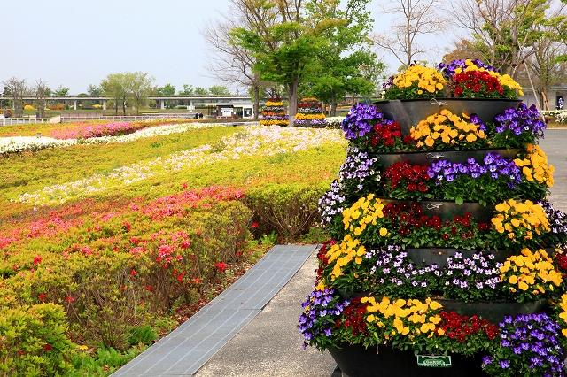 浜名湖ガーデンパーク-9