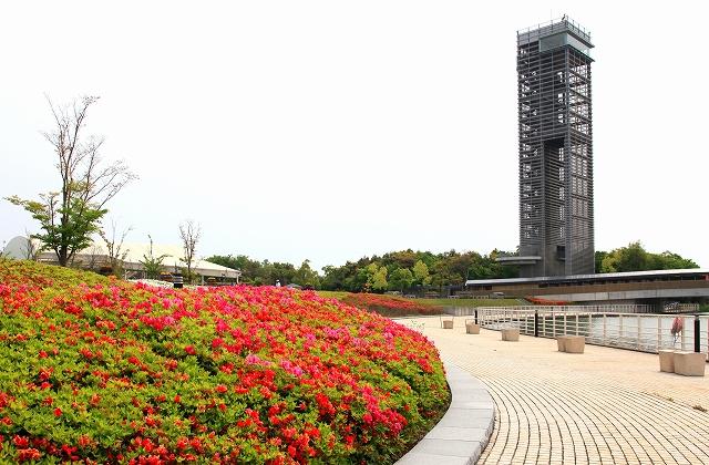 浜名湖ガーデンパーク-10