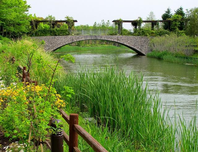 浜名湖ガーデンパーク-3